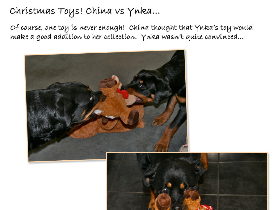 China vs Ynka